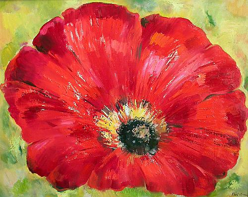 Post Comment   Send E-Card  Add to My GalleryPoppy Flowers Painting