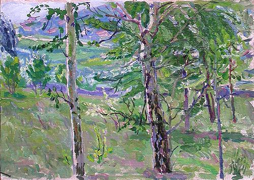 Sketch. Birch Grove summer landscape - oil painting