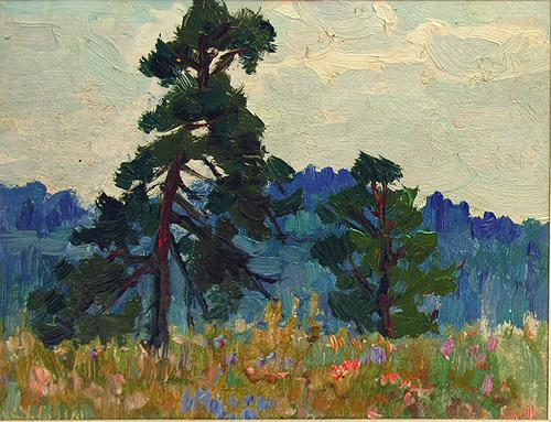 Pine Trees summer landscape - oil painting