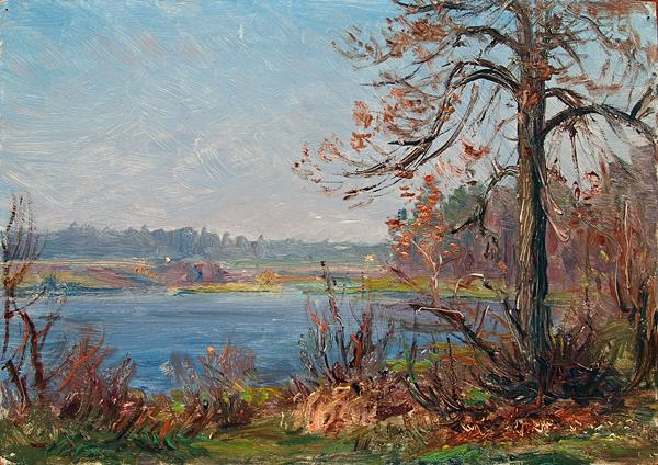 Untitled autumn landscape - oil painting
