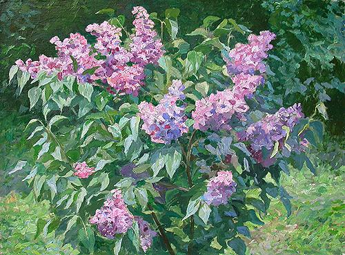 Bush of Lilac flower - oil painting