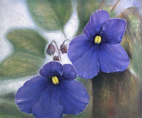 Violets flower - oil painting