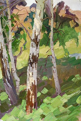 Birches vegetation - oil painting