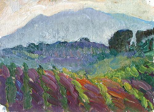 Sketch summer landscape - oil painting